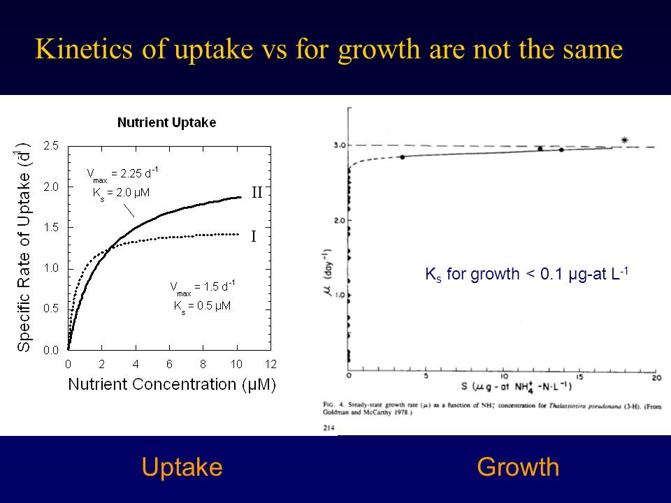 Kinetics of uptake vs for growth are not the same