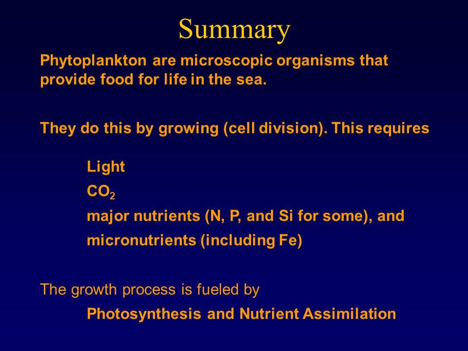 Summary Phytoplankton are microscopic organisms that provide food for life in the sea. They do this by growing (cell division). This requires.