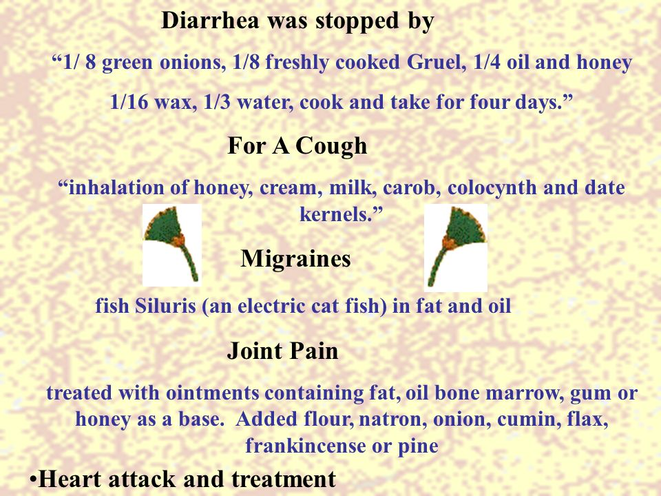 From the period of the old kingdom to the new kingdom c b for Fish oil diarrhea