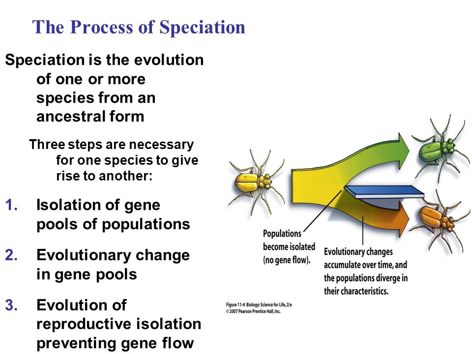the necessity of the process of change for growth in the origin of species by charles darwin Read this essay to learn about the 15 main theories of biological evolution of  this process of change has  the origin of species in 1858, when darwin was.