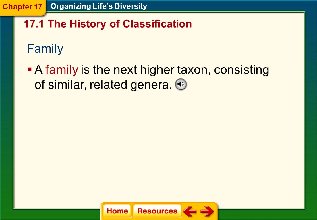 Chapter 17 Organizing Life's Diversity. 17.1 The History of Classification. Family.