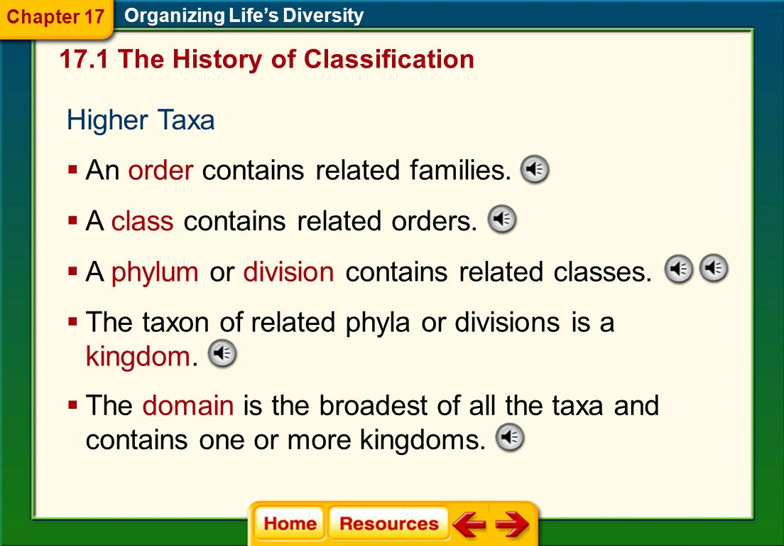 An order contains related families.