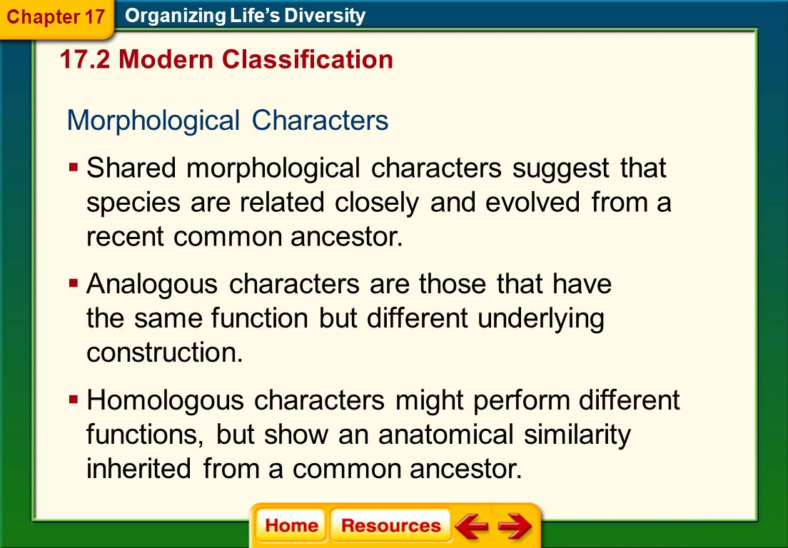Morphological Characters