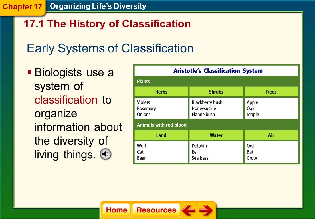 Early Systems of Classification
