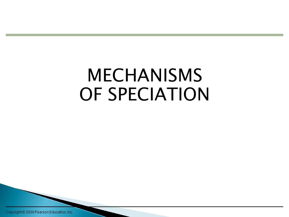 MECHANISMS OF SPECIATION
