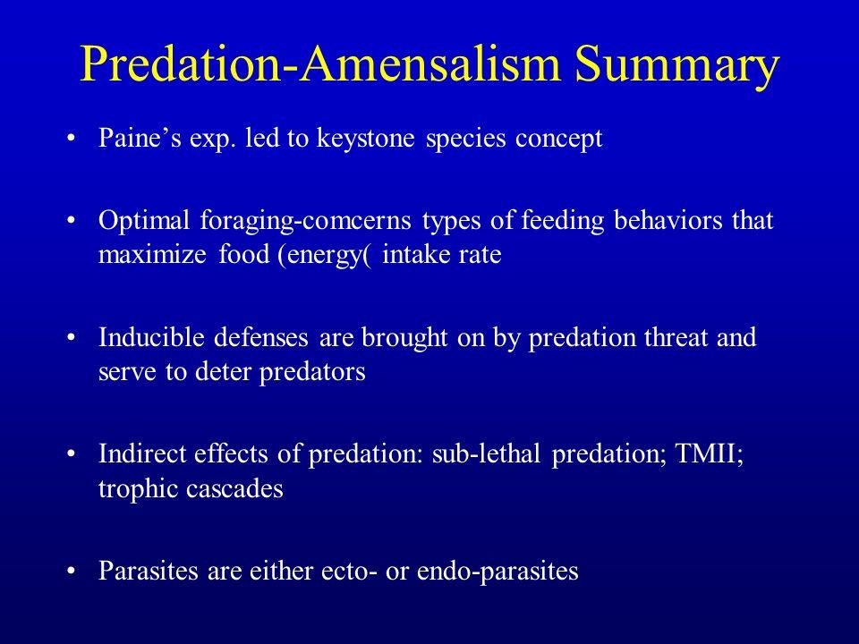 Predation-Amensalism Summary