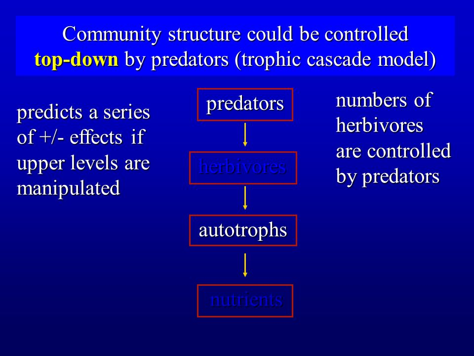 Community structure could be controlled top-down by predators (trophic cascade model)