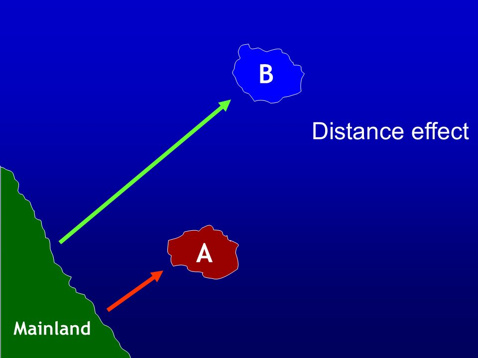 B Distance effect A Mainland