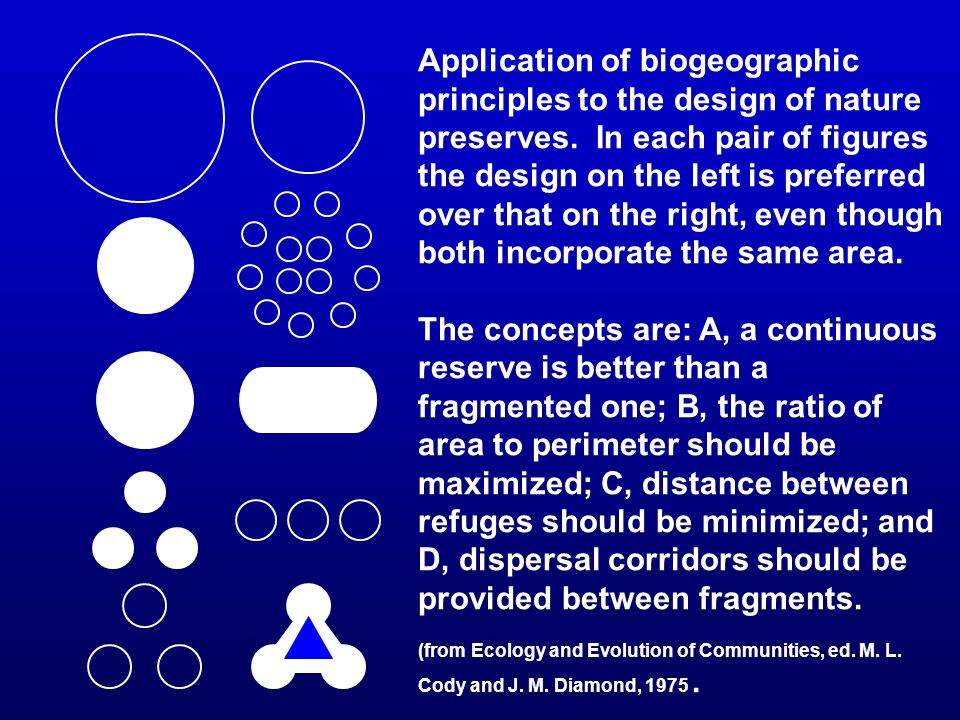 Application of biogeographic principles to the design of nature preserves. In each pair of figures the design on the left is preferred over that on the right, even though both incorporate the same area.