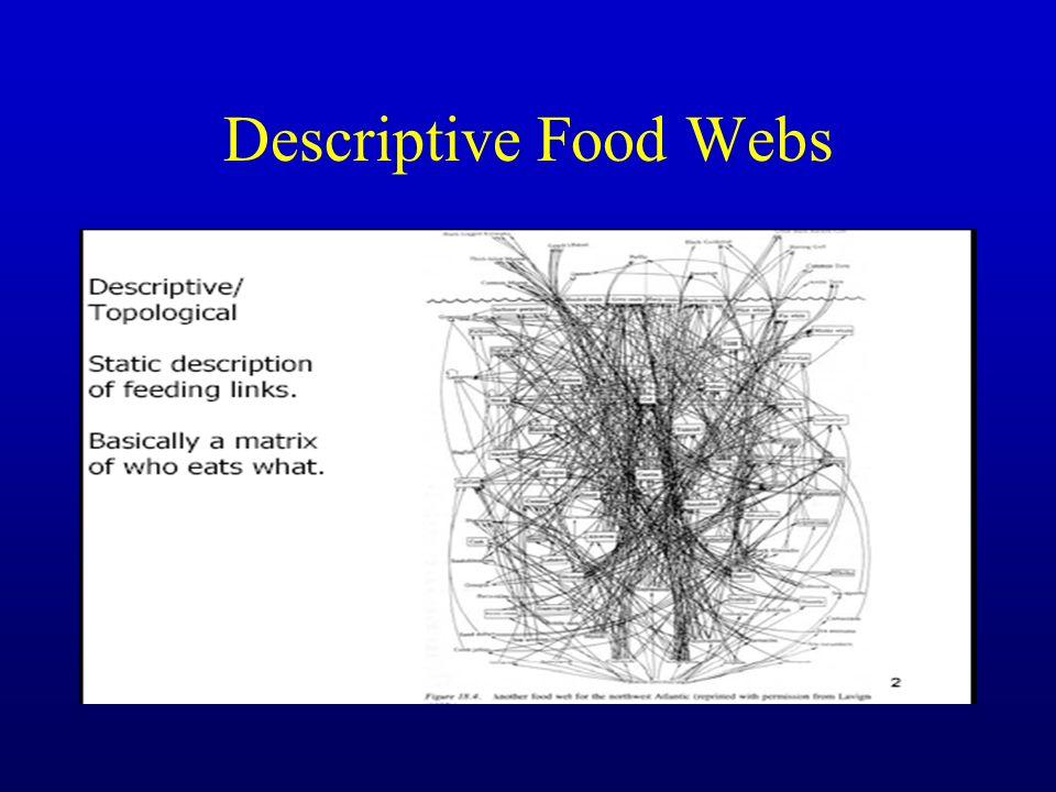 Descriptive Food Webs