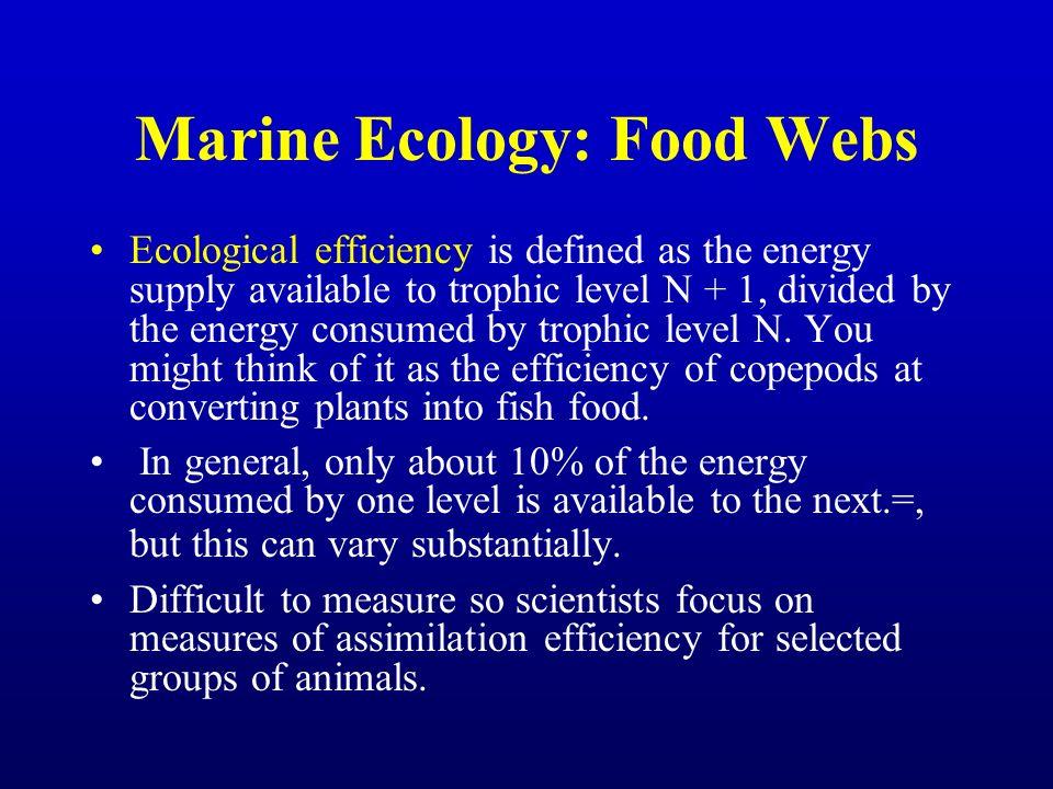 Marine Ecology: Food Webs
