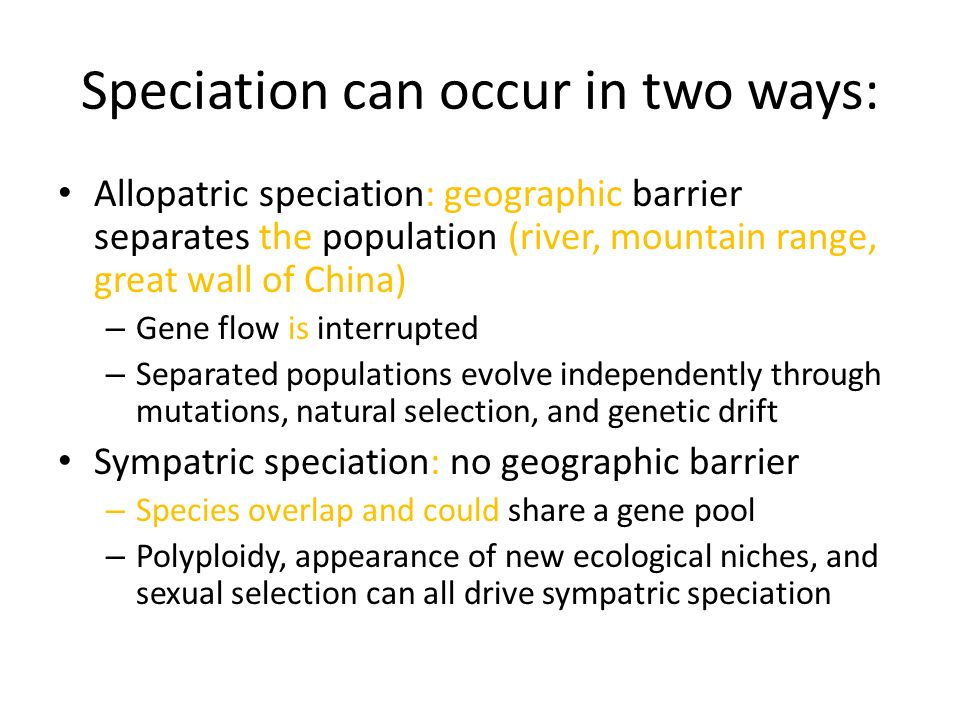 Speciation And Extinction Ppt Video Online Download