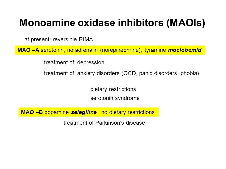 monoamine dysfunction Cognitive dysfunction in dogs  monoamine oxidase (mao-b) inhibitors,anti-inflammatory agents (nsaids), antioxidants (vitamin e),oestrogen,and others.
