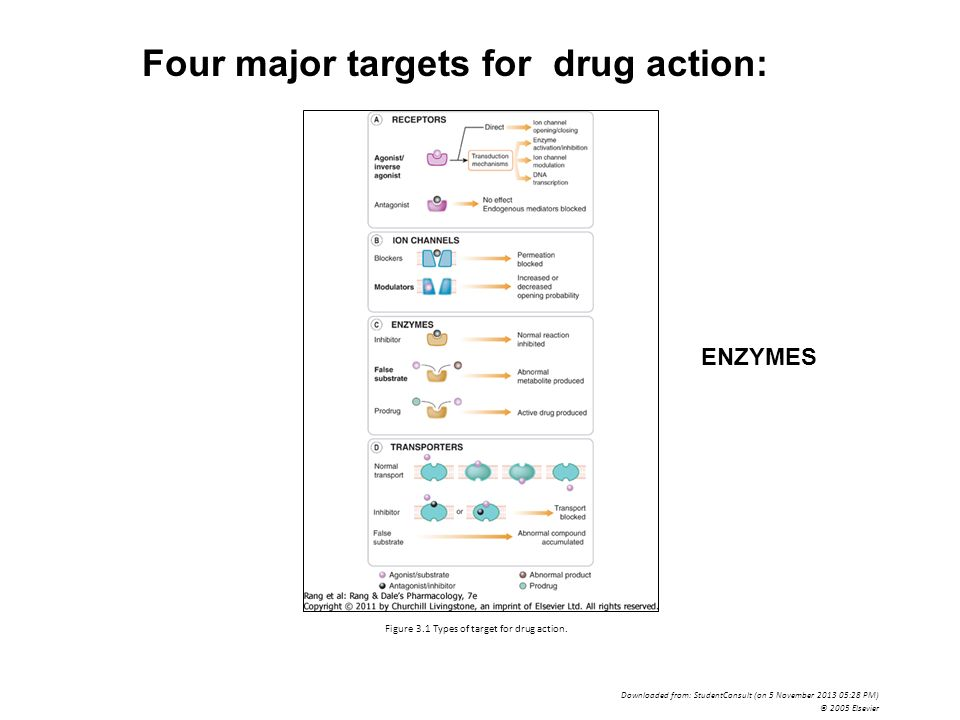 types of drug interactions pdf