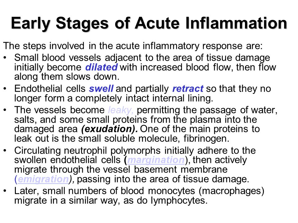 stages in acute inflammatory response Maternal inflammatory response usually due to ascending bacterial infection by  group  stage 1 (mild): acute subchorionitis / acute chorionitis.