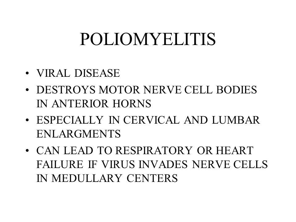 anterior horn cell disease pdf