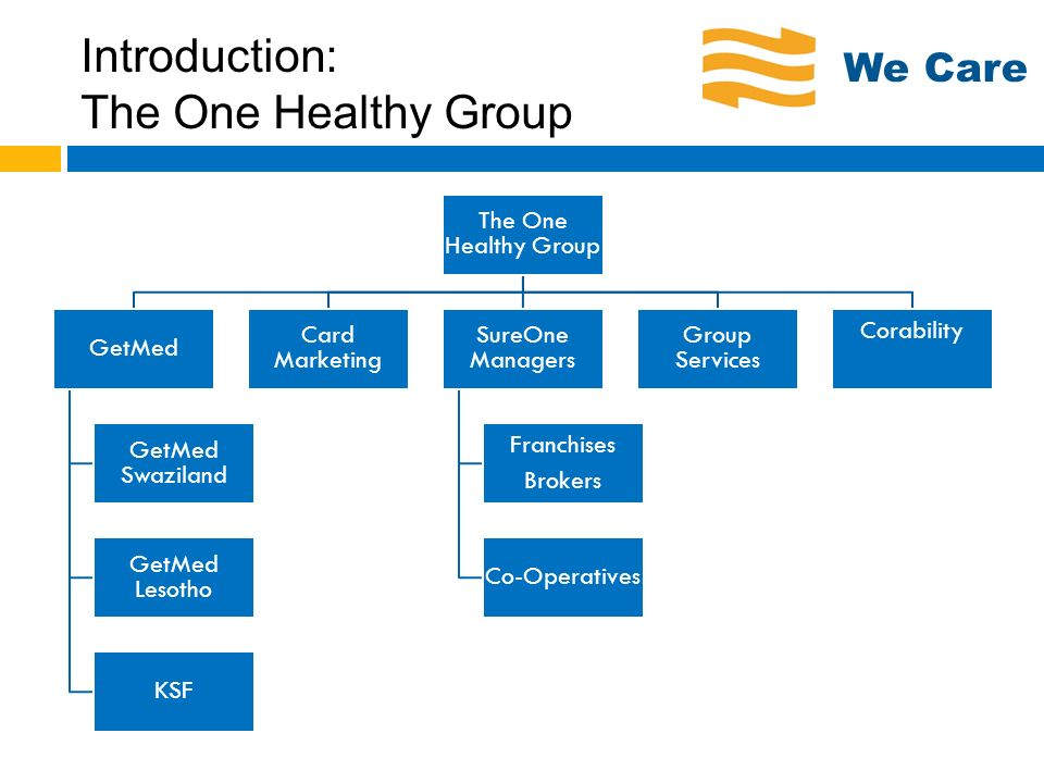 Introduction: The One Healthy Group