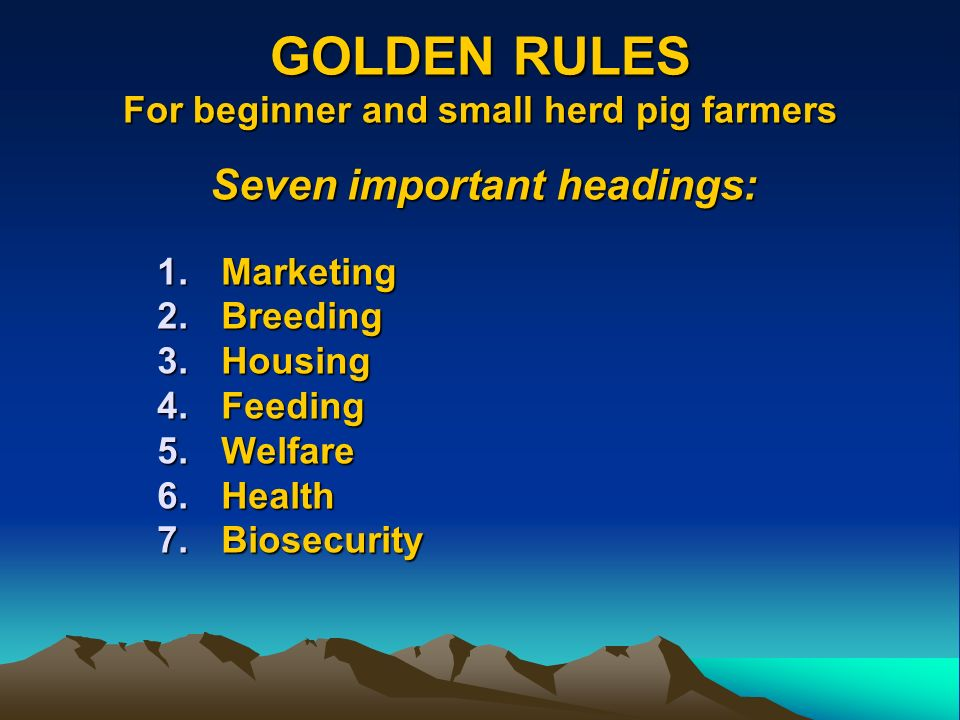 GOLDEN RULES For beginner and small herd pig farmers