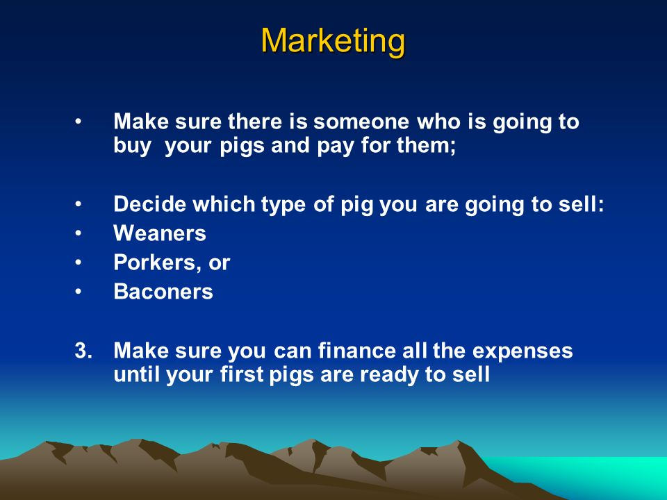 Marketing Make sure there is someone who is going to buy your pigs and pay for them; Decide which type of pig you are going to sell: