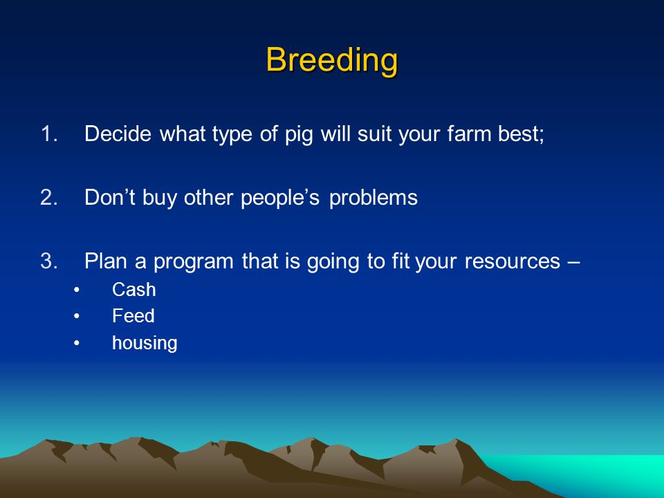Breeding Decide what type of pig will suit your farm best;