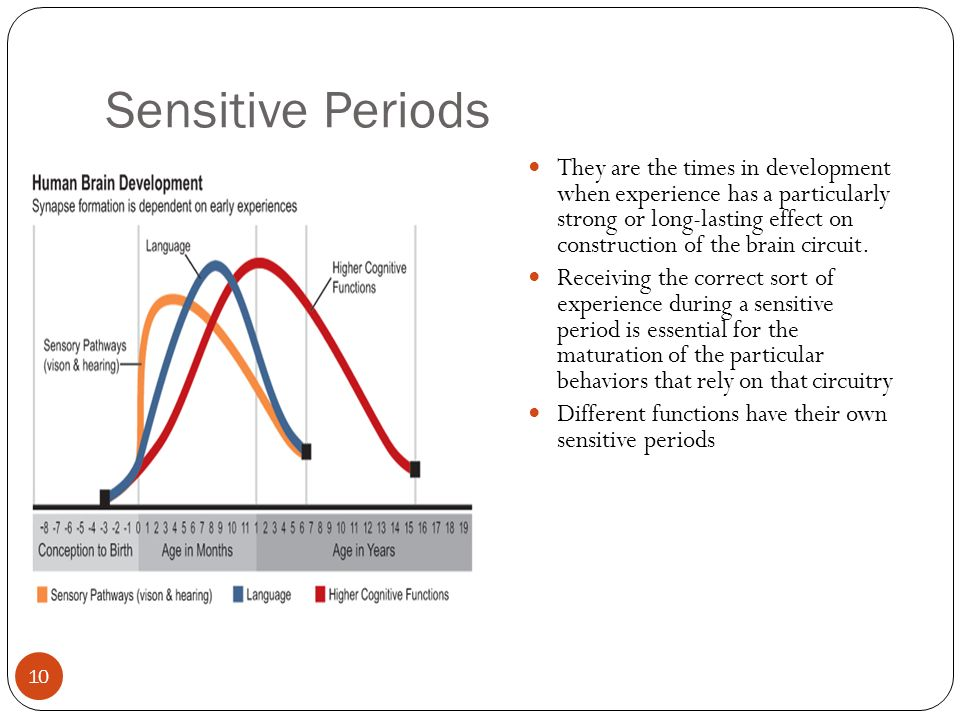 sensitive period 53 introduction of transgenerational epigenetic inheritance, effects of the  environment and sensitive periods in epigenetic control to view this video  please.