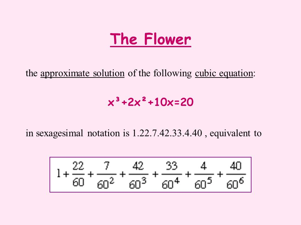 The Flower the approximate solution of the following cubic equation: x³+2x²+10x=20.