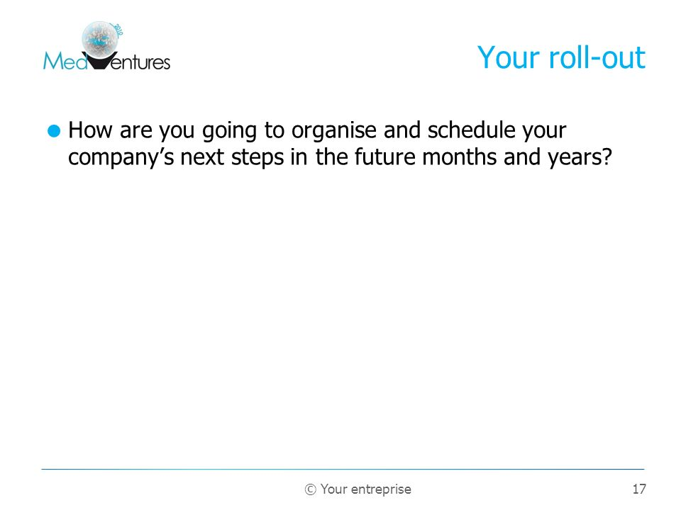 Your roll-out How are you going to organise and schedule your company's next steps in the future months and years