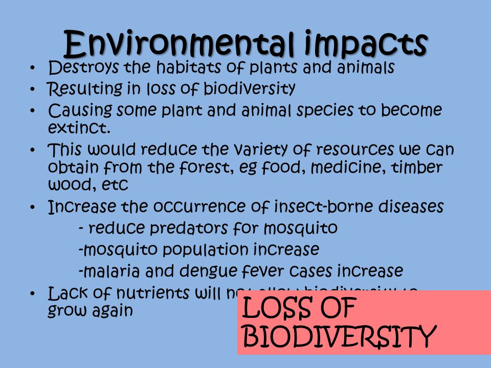 "environmental effects when species become extinct essay As conservation ""arks"" for endangered species and, increasingly,  it's also true  that some of the most endangered animals are not the highly  biological and  social factors that determine the viability of a population over time."
