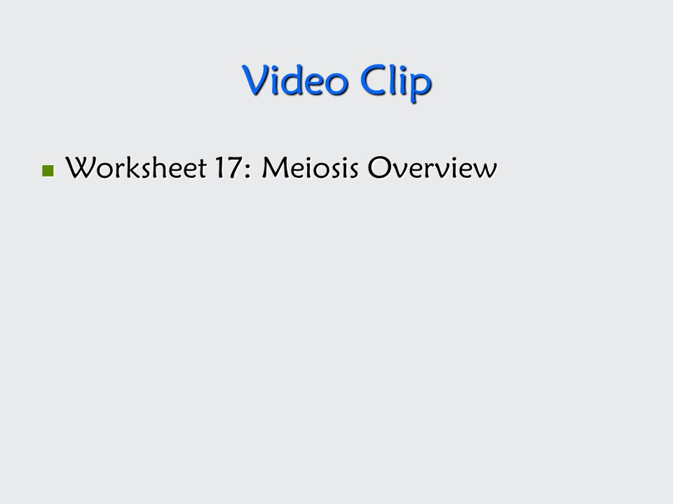 Video Clip Worksheet 17: Meiosis Overview