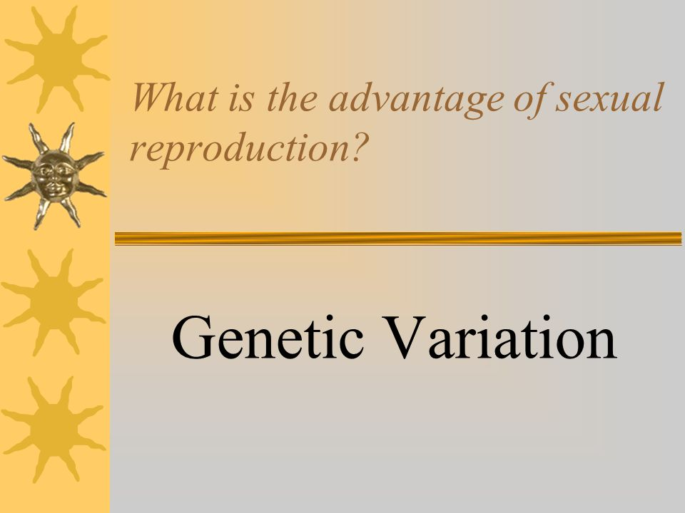 An Advantage Of Sexual Reproduction Is That