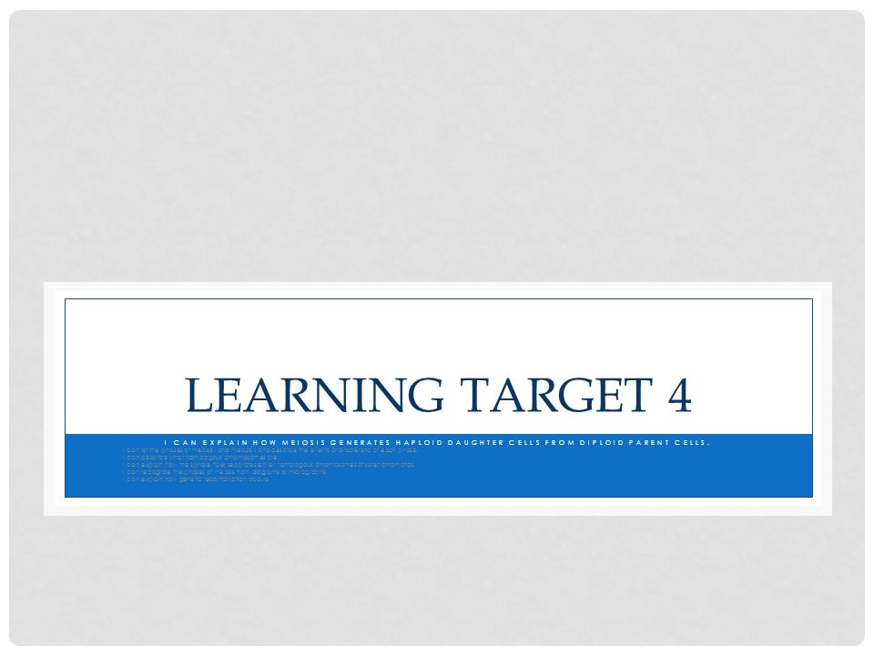 Learning Target 4 I can explain how meiosis generates haploid daughter cells from diploid parent cells.