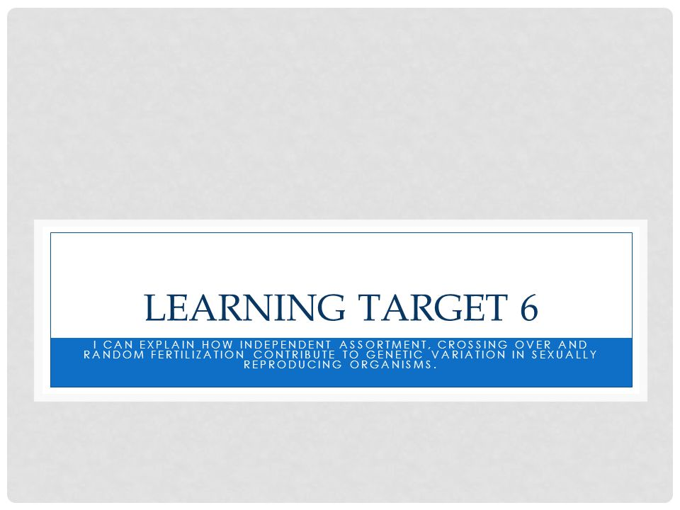 Learning Target 6