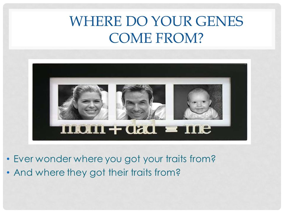 Where do your genes come from