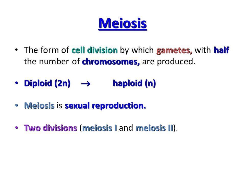 Problem: Our cells have 46 chromosomes—so why don't fertilized ...