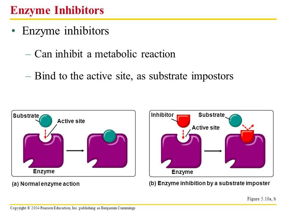 Enzyme Inhibitors Enzyme inhibitors Can inhibit a metabolic reaction