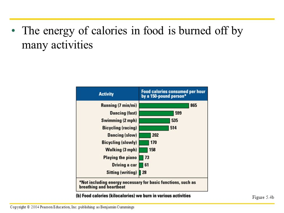 The energy of calories in food is burned off by many activities