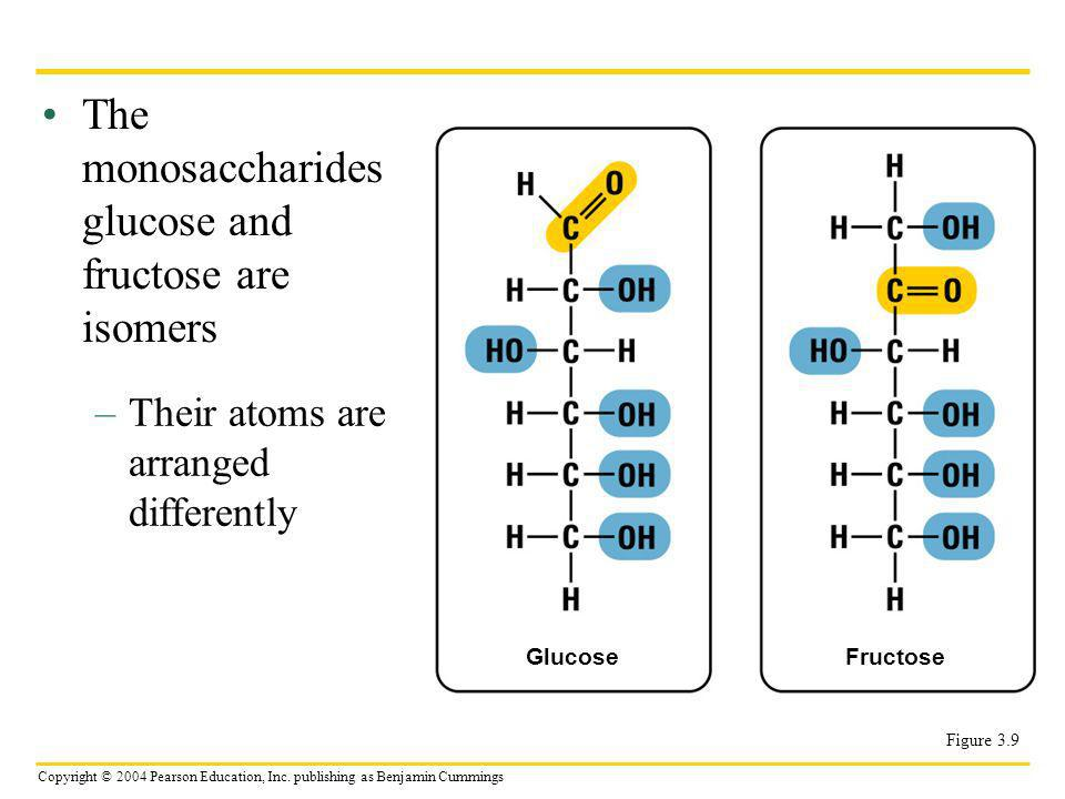 The monosaccharides glucose and fructose are isomers