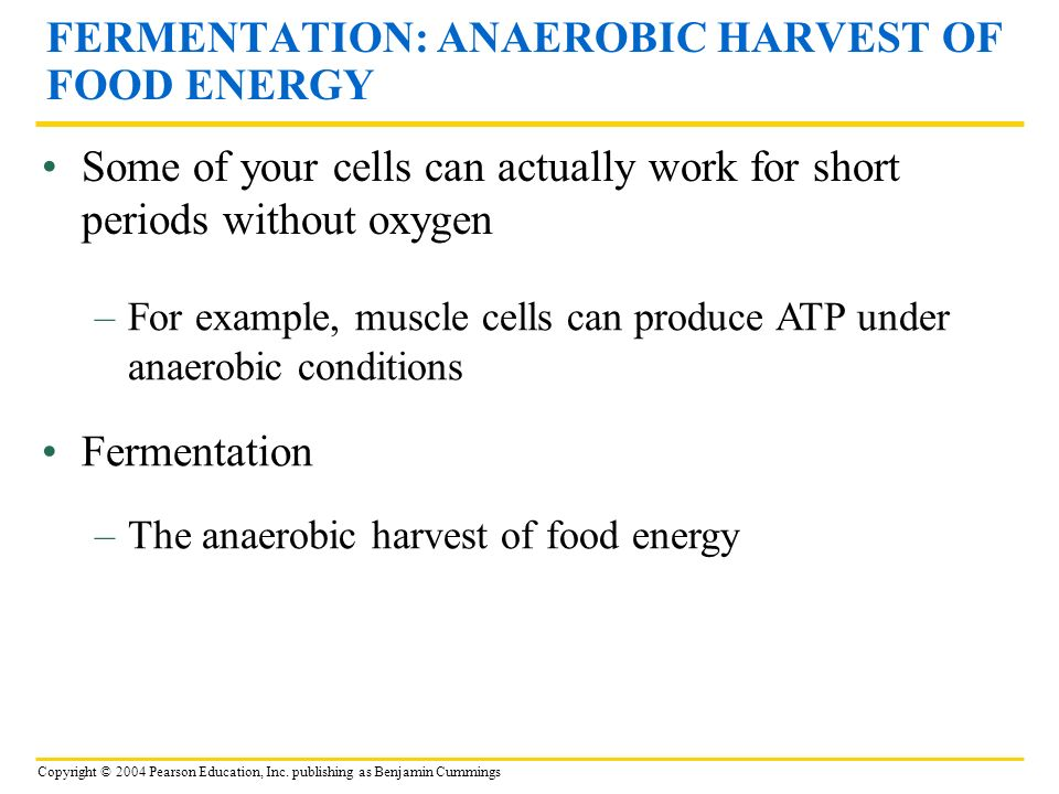 FERMENTATION: ANAEROBIC HARVEST OF FOOD ENERGY