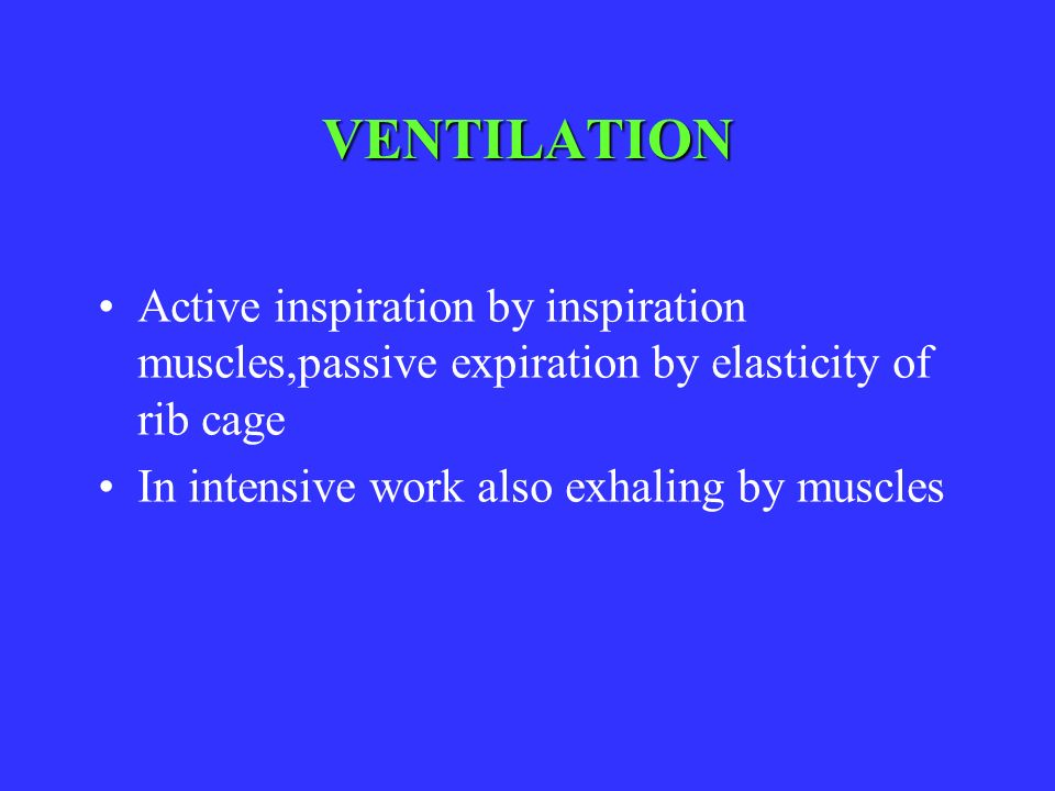 VENTILATION Active inspiration by inspiration muscles,passive expiration by elasticity of rib cage.
