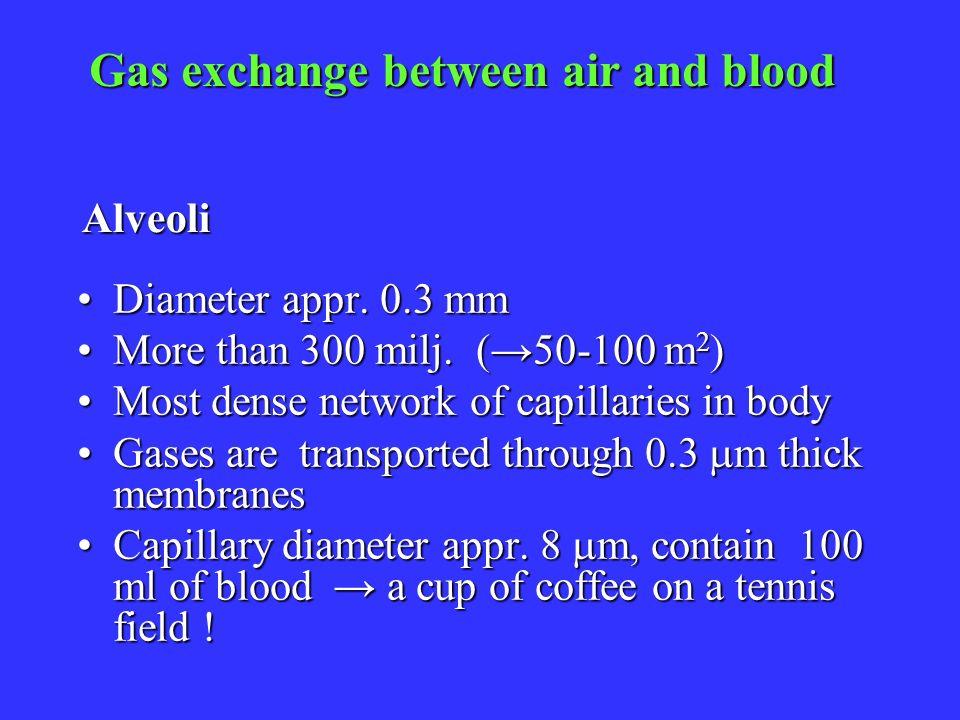 Gas exchange between air and blood