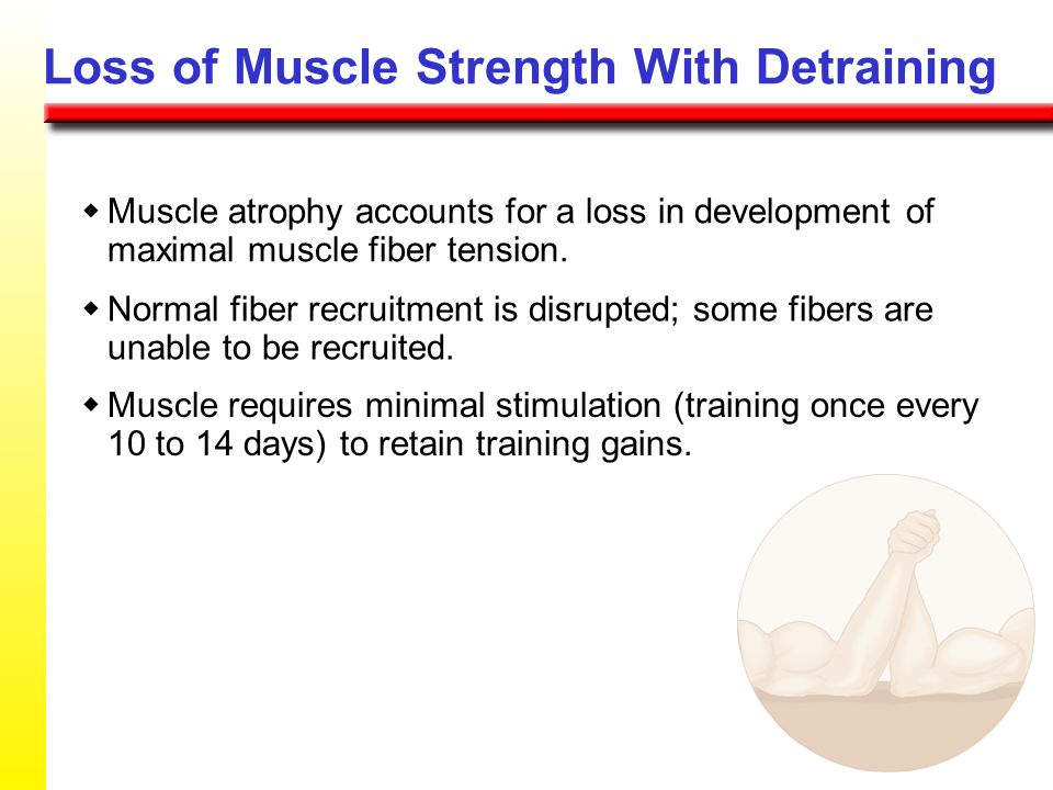 Loss of Muscle Strength With Detraining