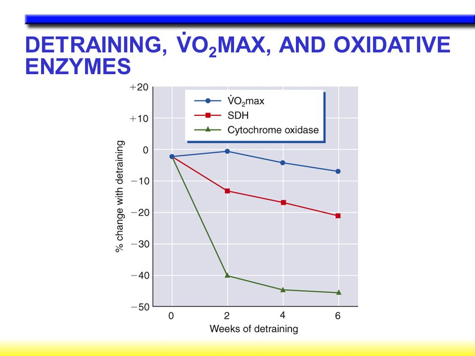 DETRAINING, VO2MAX, AND OXIDATIVE ENZYMES