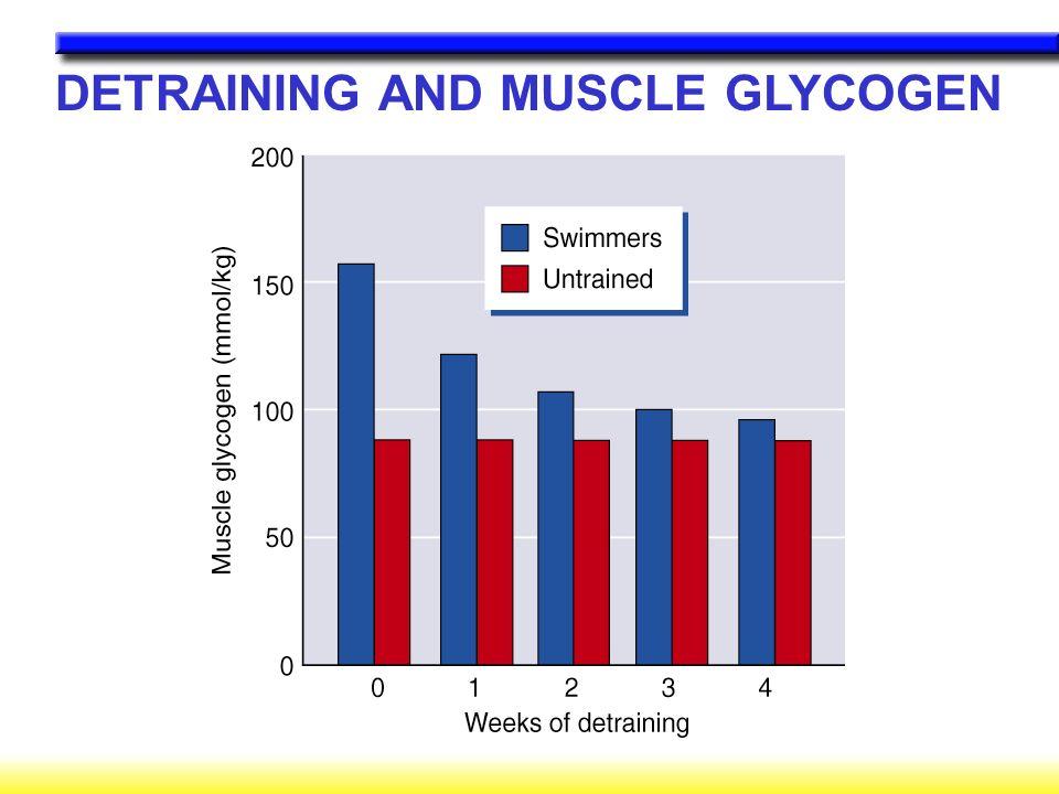 DETRAINING AND MUSCLE GLYCOGEN