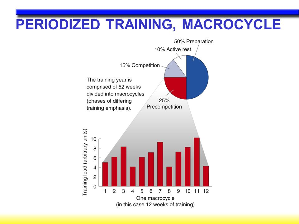PERIODIZED TRAINING, MACROCYCLE