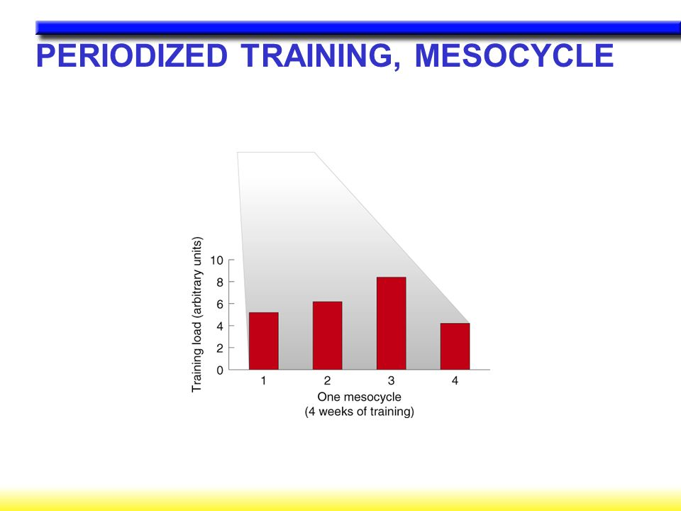 PERIODIZED TRAINING, MESOCYCLE