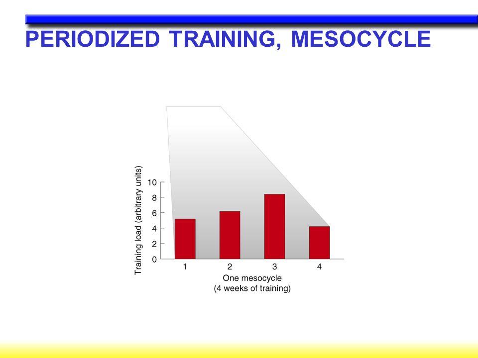 PERIODIZED TRAINING, MESOCYCLE