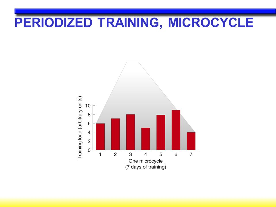 PERIODIZED TRAINING, MICROCYCLE
