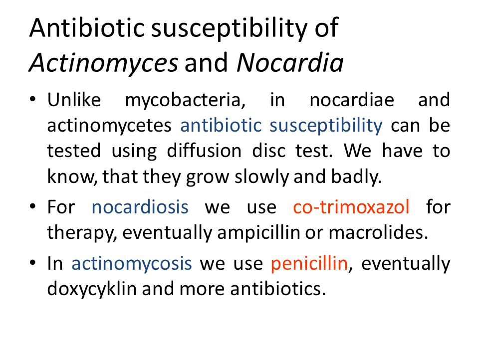 Antibiotic susceptibility of Actinomyces and Nocardia