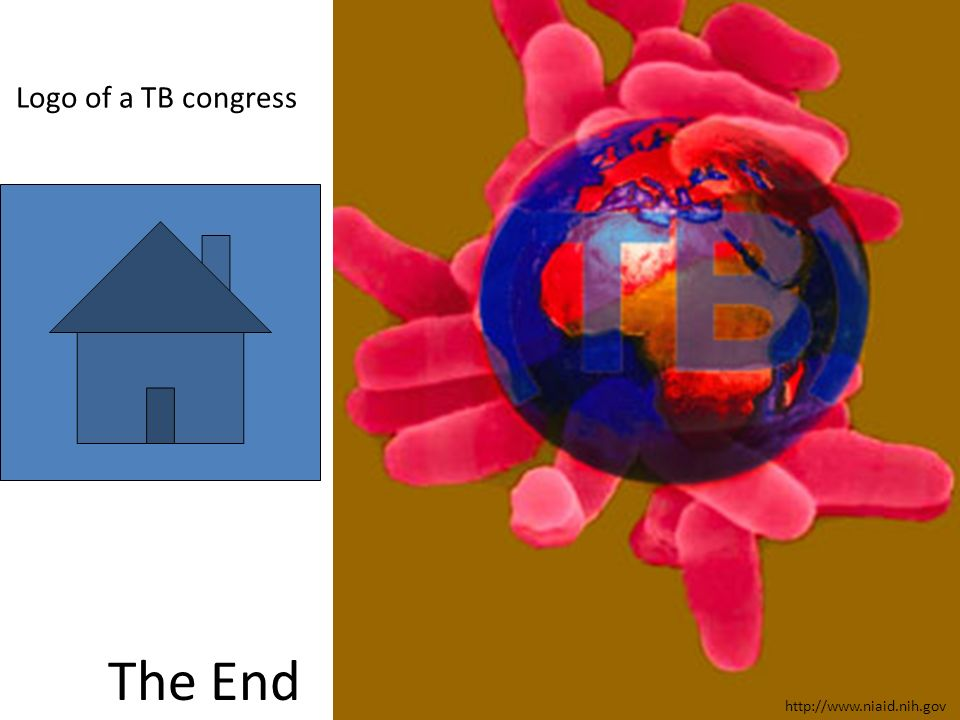 Logo of a TB congress The End