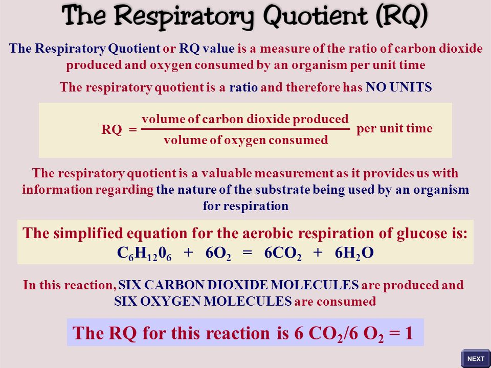 respiratory quotient Metabolism for energy and the respiratory quotient introduction : animal cells obtain energy in the form of atp by oxidizing food molecules.